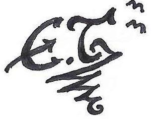 Evi_monografi